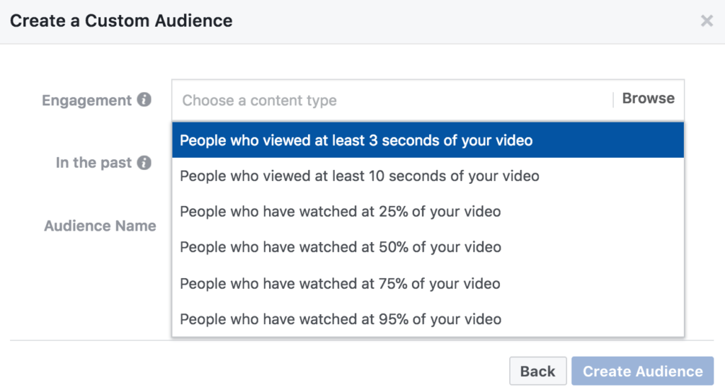 video audiences